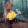 Maťko a Kubko v pralese