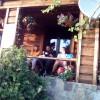 Veget na chate v Balbici