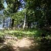 Les cestou na Rydošovú